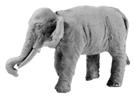 Indian Elephant (Bare)