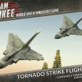 Photo of Tornado Strike Flight (TGBX13)